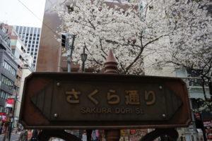 日本橋さくら通りの看板