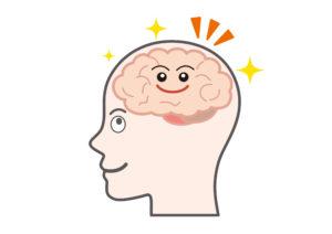 脳イラスト
